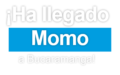 Ha llegado momo a Bucaramanga, Momo siempre amigos